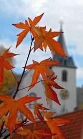 Blicke-Bergkirche_231014